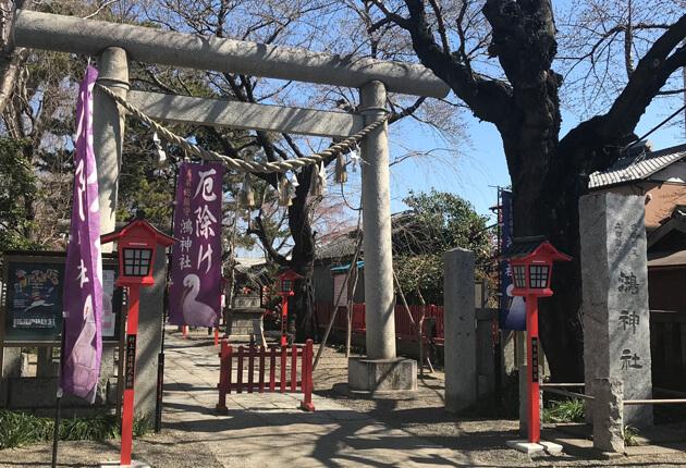 埼玉県鴻巣市「鴻神社」
